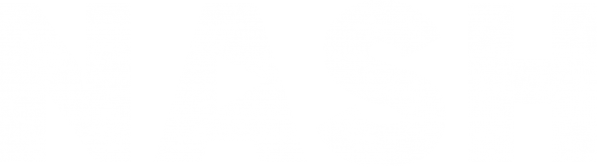 Nash Video Analytics